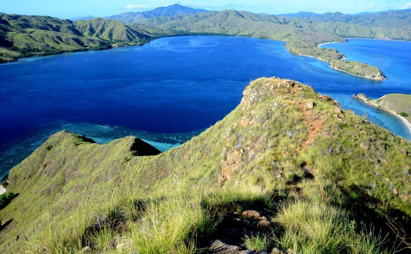 Full Information About Komodo Island Boat Tour