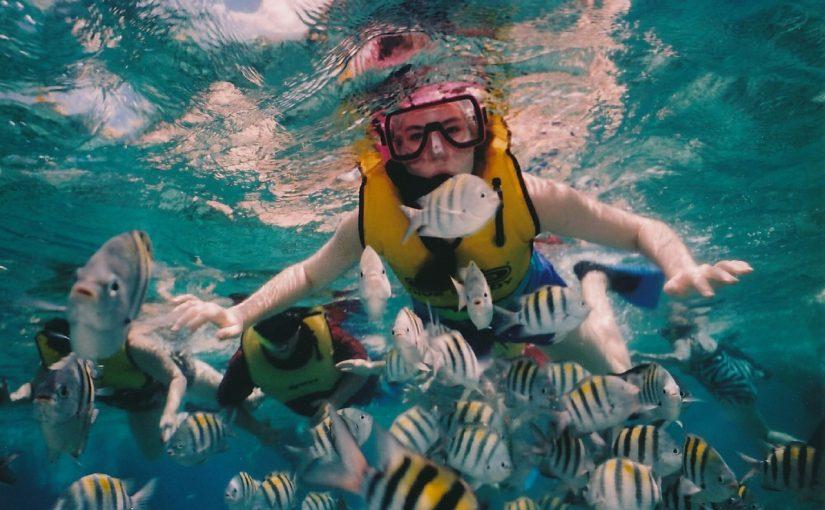 Best Spots To Do Nusa Penida Snorkeling Tour